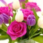 Народні прикмети на 25 березня – день Феофана
