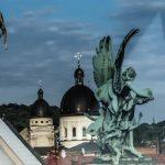 Міжнародний фестиваль класичної музики LvivMozArt переноситься на 2021 рік