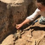 Єфимія, Пташина кістка 29 вересня: історія, традиції та прикмети свята